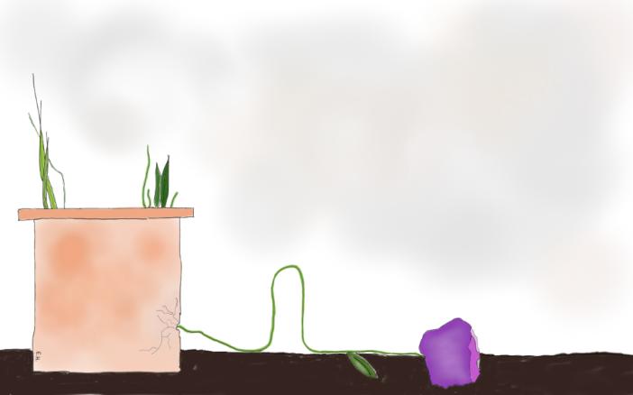 prostrating flower